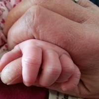 Nowy projekt PiS-u? Program Babcia Plus ma być skierowany do babć i dziadków...